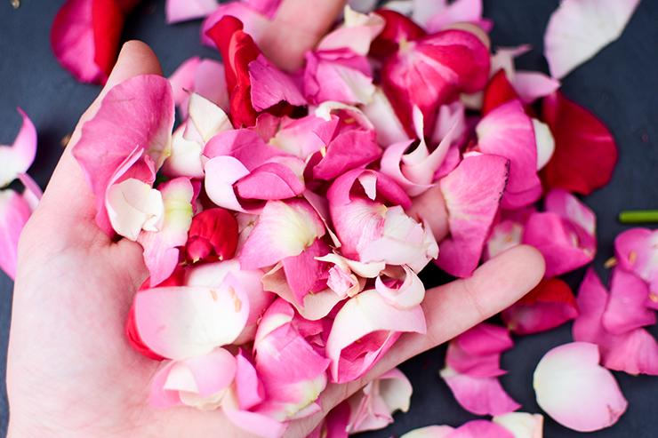 Rosenblätter Hand Take