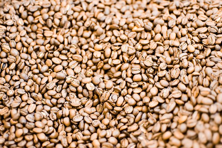 hofer-zurueck-zum-ursprung-event-kaffeebohnen